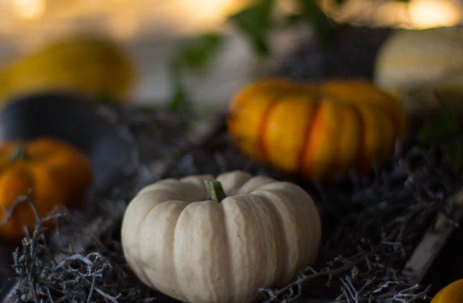 Herbst Deko Kürbis Traubenzweig
